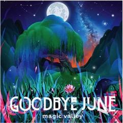 10 Mejores Discos de la Década Goodbye June