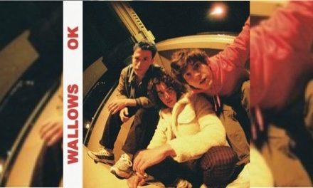 Wallows lanzan 'OK'